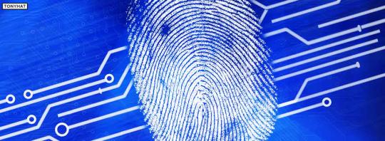 Fingerprint - BLOG - 13