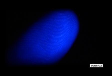 Fingerprint - BLOG - 5