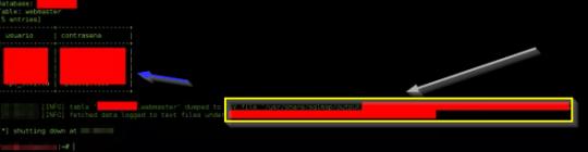 SQL Injection - BLOG - 17