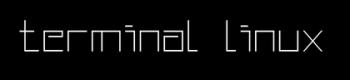 Prompt Linux Terminal - BLOG - 12