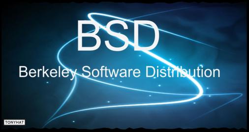 Captura: (1975) Berkeley software distribution (BSD/UNIX) ;)