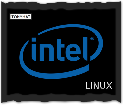 Captura: Intel & Linux }:D