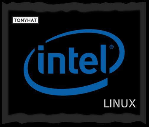 Captura: Intel & Linux }:D