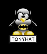 TonyHAT - 207