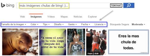 Captura 11: Bing (opciones de