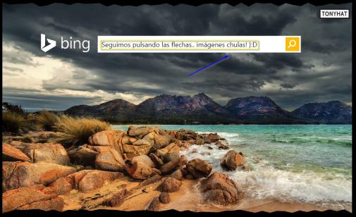 Captura 3: Bing (imagen de