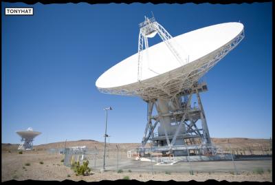 Signal Contact, ISC (VIII), BLOG - 14