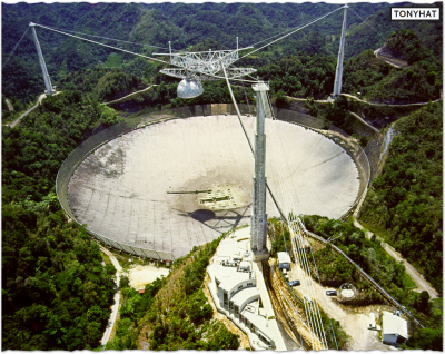 Signal Contact, ISC (VIII), BLOG - 21