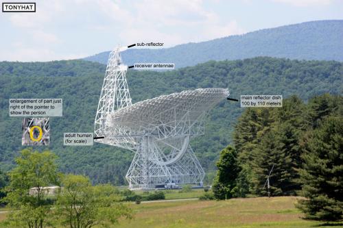 Signal Contact, ISC (X), BLOG - 106