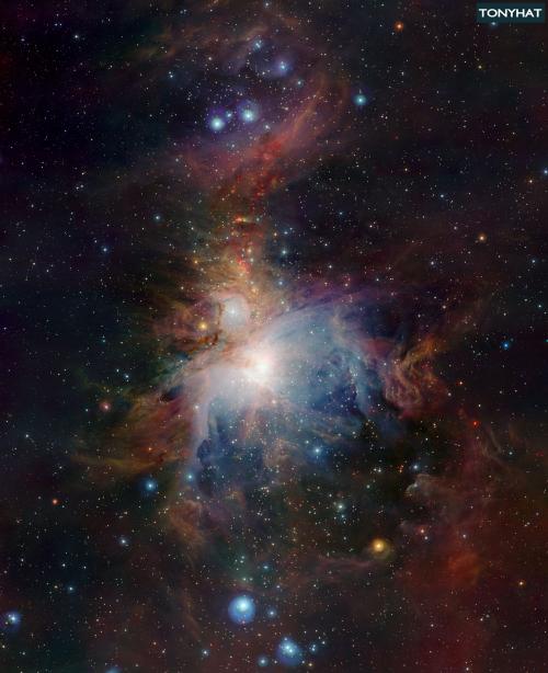 Signal Contact, ISC (X), BLOG - 48