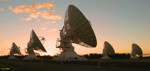Signal Contact, ISC (X), BLOG - 83