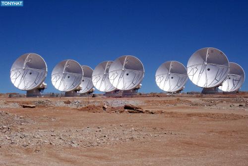 Signal Contact, ISC (X), BLOG - 98