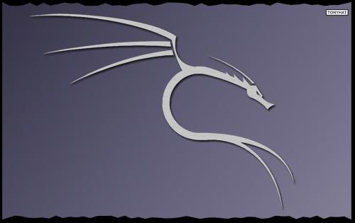 Hacking-Kali, 1, BLOG - 003