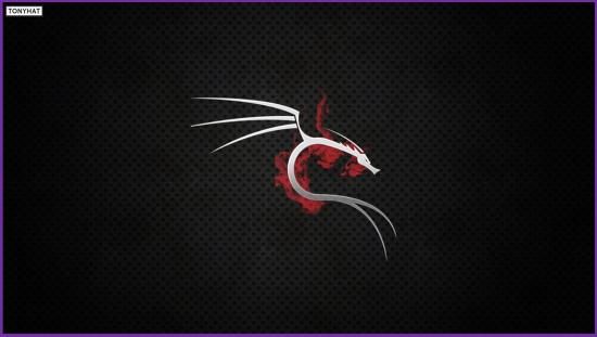 Kali Linux, LTP, Vol. Two, BLOG - 012