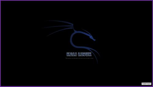 Kali Linux, LTP, Vol. Two, BLOG - 014