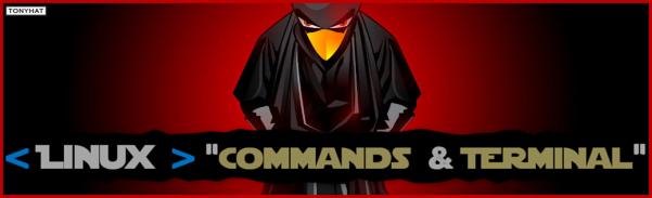 Linux, Commands & terminal, cápsula. 1 - BLOG - 002