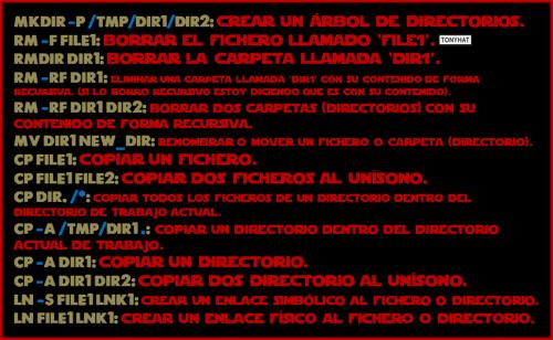 Linux, Commands & terminal, cápsula. 1 - BLOG - 013