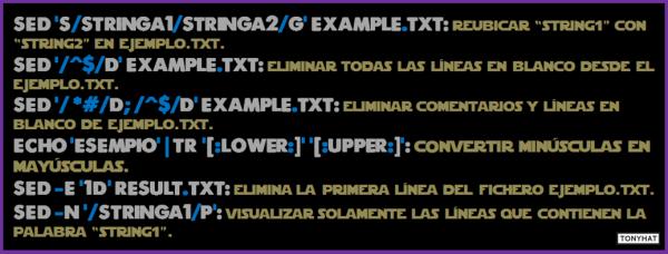 Linux, Commands & terminal, cápsula. 3 - BLOG - 012