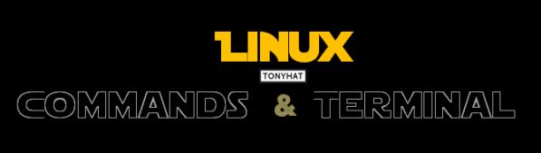 Linux, Commands & terminal, cápsula. 4 - BLOG - 002