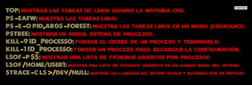 Linux, Commands & terminal, cápsula. 4 - BLOG - 019