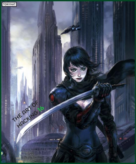 Hacking-Kali, 16, BLOG - 005