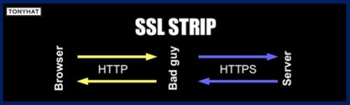 HSTS, BLOG - 006