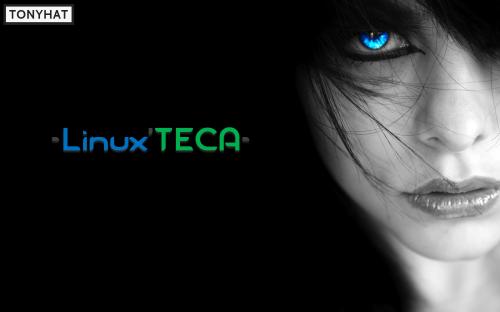 Linux'TECA, I, BLOG - 030
